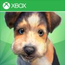 Un nouveau Kinectimals sur Windows Phone