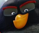 Un film Angry Birds en 2016